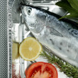 Little tunny, tuna, alby, albacore, silver color. - Stock Photo