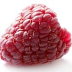 One red macro raspberry over white background — Stock Photo