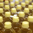 Sunflower seed oil pattern factory warehouse store - Foto de Stock