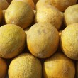 Yellow melon fruits market stacked rows — Stock Photo