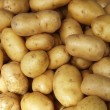 Potatoes raw pattern in the market — Stock Photo