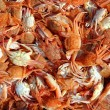 Mediterranean red crab pattern seafood texture - Stock Photo