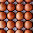 Royalty-Free Stock Photo: Eggs rows pattern box food background