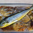 Dolphin fish dorado octopus and cuttlefish - Stock Photo