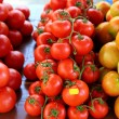 Tomatoes stacked in market different species — Stock Photo