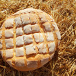 Bread bun round on golden wheat straw — 图库照片