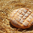 Bread bun round on golden wheat straw — Stock Photo