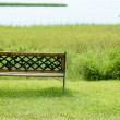 Bench over the green grass on the lake — Stock Photo #5502866