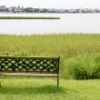 Bench over the green grass on the lake — Stock Photo #5502867
