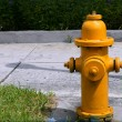 American hose hydrant, urban fire prevention - Stock Photo