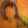 Horseshoe on the orange wall, good luck - Stockfoto