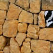 Unique, alone, one zebra texture painted stone - Stock Photo
