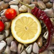 Clams with tomato, chili and lemon, seafood — Stock Photo