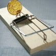 Credit money is a mouse trap — Stock Photo