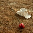 Royalty-Free Stock Photo: William tell metaphor with red apple and arrow