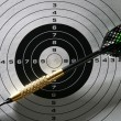 Black and white target with dart and shadows — Stock Photo