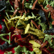 Metaphor of dead plastic toy war soldiers — Stockfoto