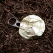Royalty-Free Stock Photo: Top of a can over a forest floor