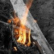 Embers texture, wood in fire — Stock Photo