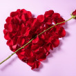 Red petals heart, valentines flowers metaphor — Stock Photo