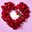 Red rose petals in heart shape, copy space blank note — Stock fotografie