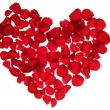 Red petals heart, valentines flowers metaphor — Stock Photo #5504212