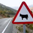 Royalty-Free Stock Photo: European traffic sign, cows on the road