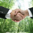 Ecological handshake businessman in a forest - Stock Photo
