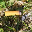 Cigarette fire hazard on forest grass macro detail — Stock Photo #5504501