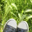 Relaxed silver shoes having rest meadow field — Stock Photo