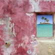 Grunge pink red wall window palm trees island — Stockfoto