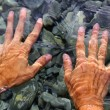 Hands underwater river water wavy shapes — Stock Photo #5504642