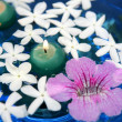 Jasmine, and pink Asarina, candles and blue water — Stock Photo #5504706