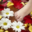 Aromatherapy, flowers feet bath, rose petal — Stock Photo