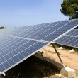 Solar cell panels in a row on Mediterranean — Stock Photo