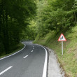 Asphalt winding curve road in a beech forest — Stock Photo #5505060