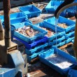 Fisherman on fisher boat deck cleaning fish boxes — Foto de Stock
