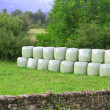 Cereal bales round green plastic wrap cover — Stockfoto