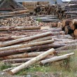 Royalty-Free Stock Photo: Logs timber industry trunks stacked outdoor