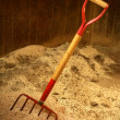 Horse stable witth straw fork tool, sawdust. - Stock Photo