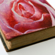 Rose printed on the cover of an old book — Stock Photo