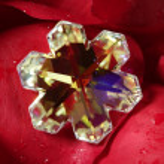 Beautiful star shape glass jewel, red rose petals — Stock Photo #5505692
