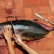 Bloody Mediterranean tuna fish preparation — Foto Stock