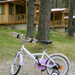 Royalty-Free Stock Photo: Children pink bicycle in wooden cabin mountain