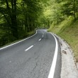 Stock Photo: Asphalt winding curve road in beech forest