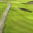 Golf course green grass hill field with holes — Stock Photo #5505947