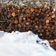 Firewood stacked in snow winter outdoor — Stock Photo