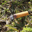 Cigarette fire hazard on forest grass macro detail — Stock Photo