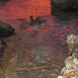 Deep red sunset water reflexion on puddle — Stock Photo #5506110