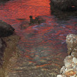 Deep red sunset water reflexion on puddle — Stock Photo